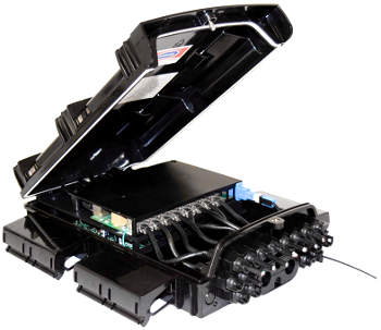 Pacpon Overtek OT-8009-PO